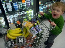 Little grocery carts are a big hit with my kids at the local grocery store.