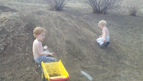 Temps in the 60s: No shirt needed when digging in dirt while in MT.