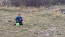 Surveying the egg hunt on the ranch.