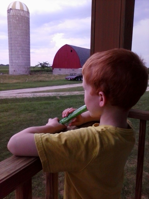 Cooling off with a popsicle on the porch makes a hot day a little bit better.