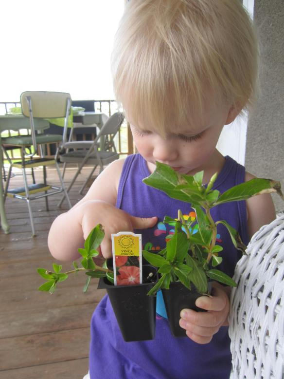 Regretfully, I do not have any photos of my wonderful sprouted seed packets in the plastic bag.  I was so moved that I forgot to grab my camera to record the amazing new gardening technique.  My daughter, however, is quite happy to apply her advanced gardening techniques to a variety of plants.