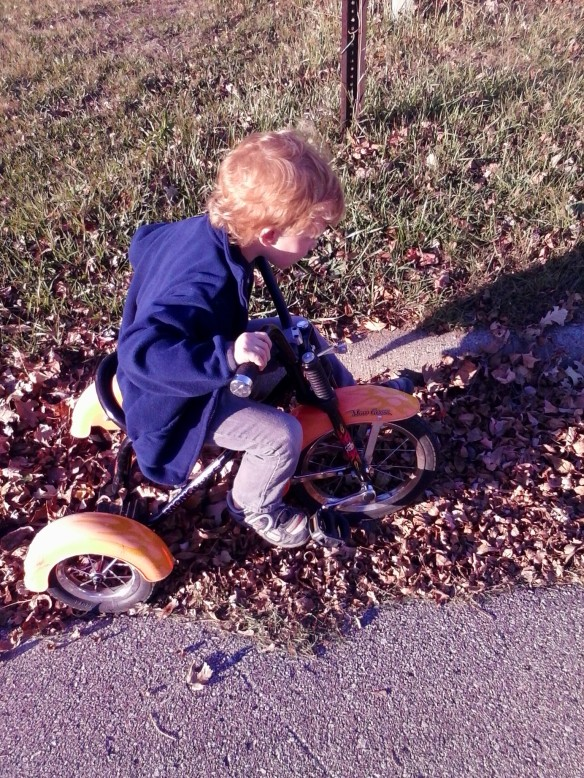 Happiness is riding your tricycle through the crunchy dried leaves.